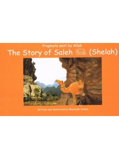 The Shelah Marie: Prophets Sent By Allah The Story Of Saleh (Shelah
