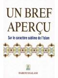French: Un Bref Apercu